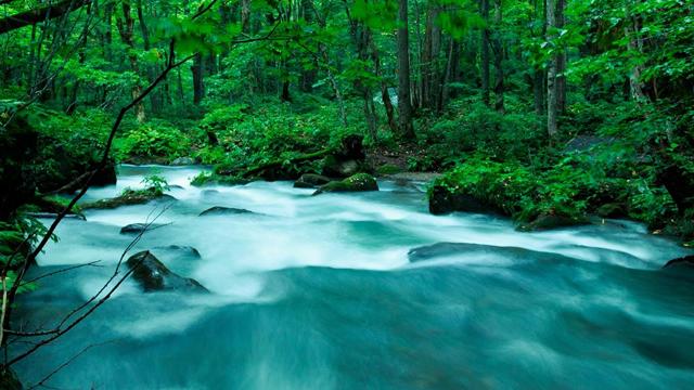 天然水サーバーとは